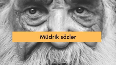 Photo of Mudrik sozler