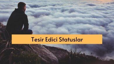 Photo of Tesir edici statuslar