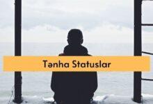 Photo of Tənha statuslar